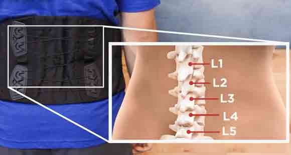 Ensure That Spinal Structures Are Not Compressed