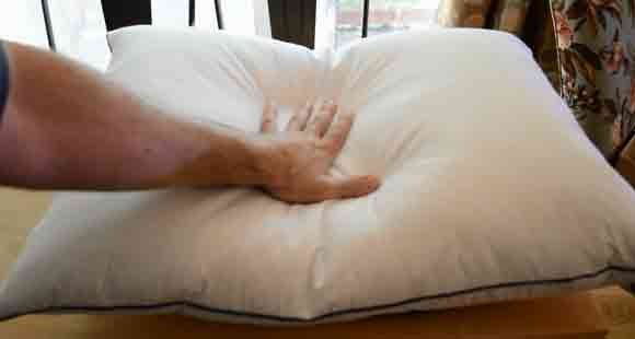 What's Inside a Down Pillow